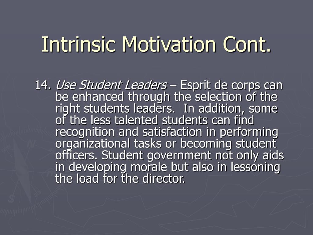 Intrinsic Motivation Cont.