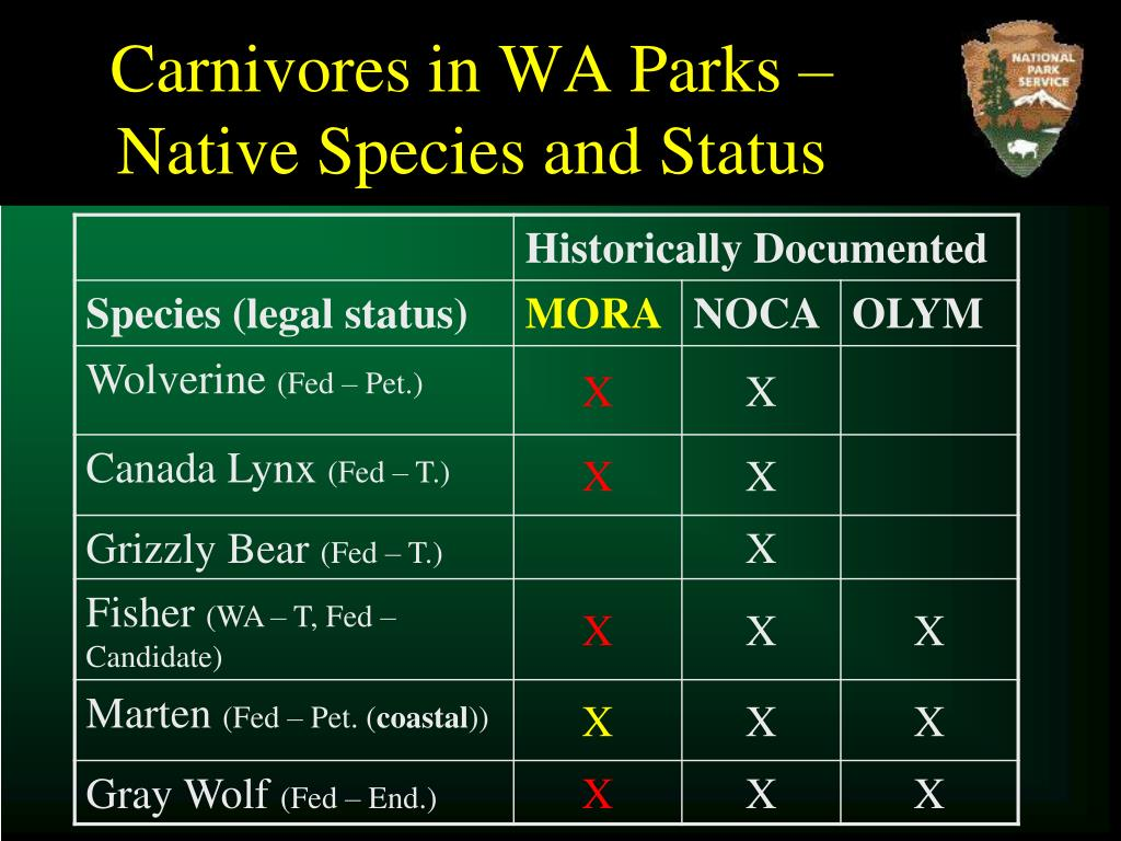 Carnivores in WA Parks – Native Species and Status
