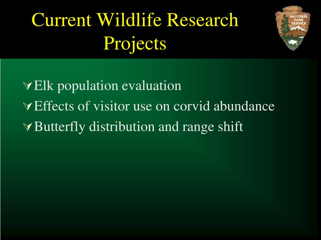 Current Wildlife Research Projects