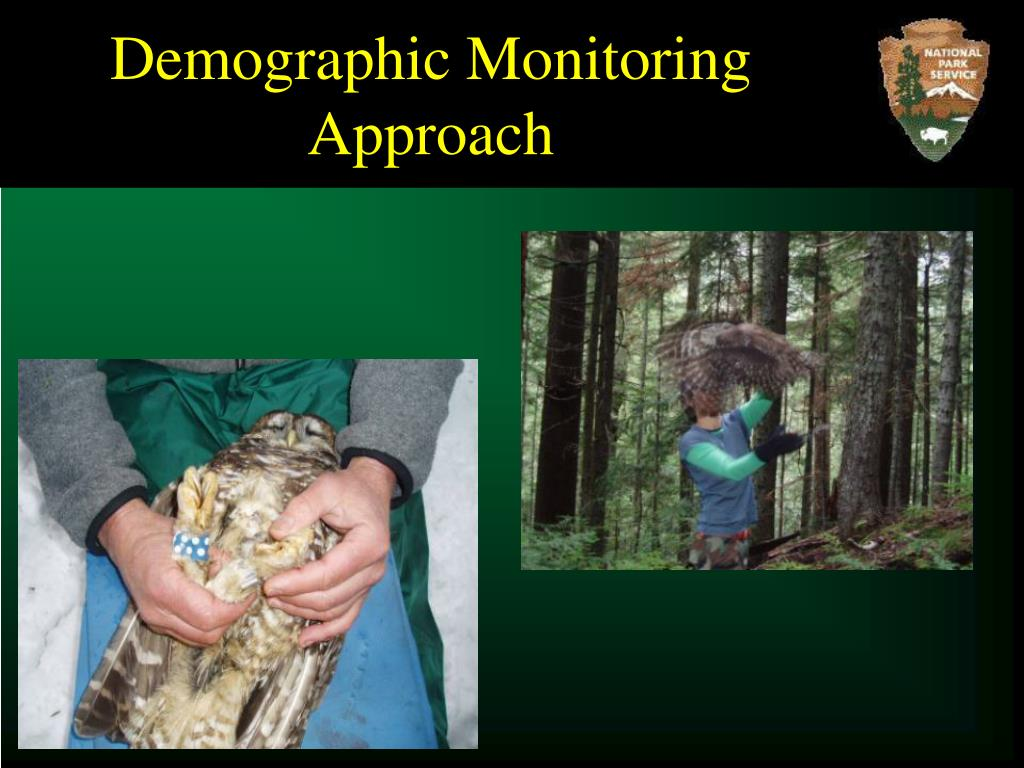 Demographic Monitoring Approach