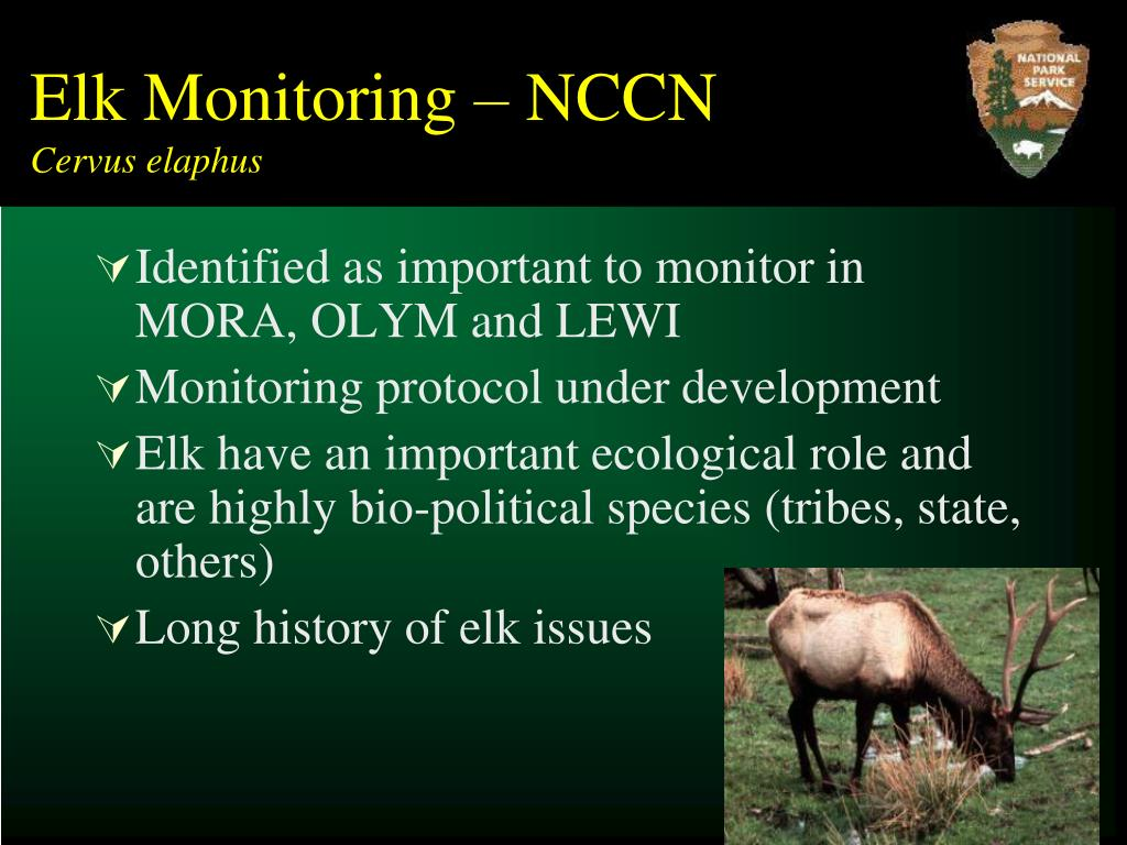 Elk Monitoring – NCCN