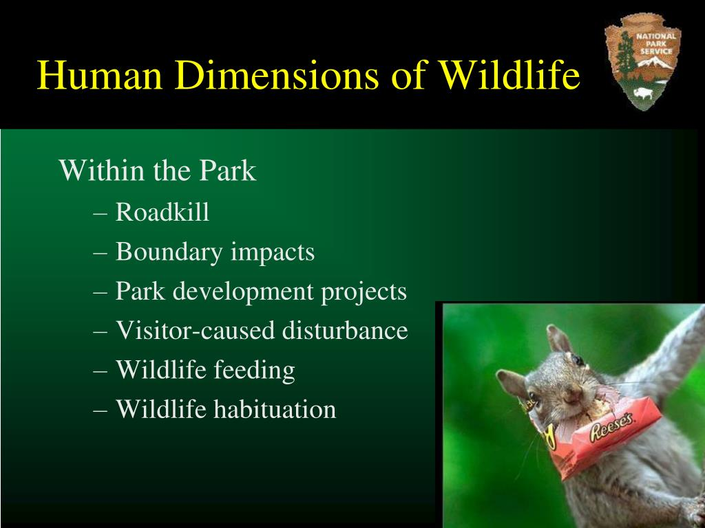 Human Dimensions of Wildlife