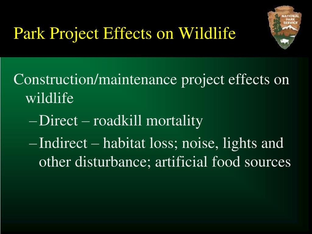 Park Project Effects on Wildlife
