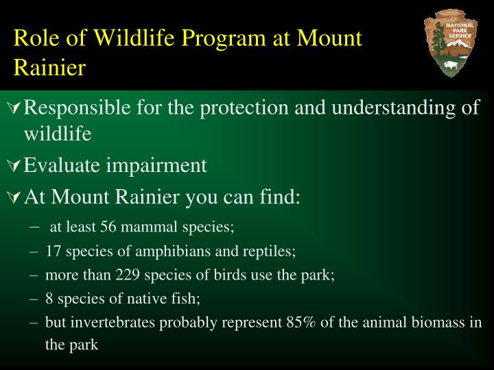 Role of wildlife program at mount rainier