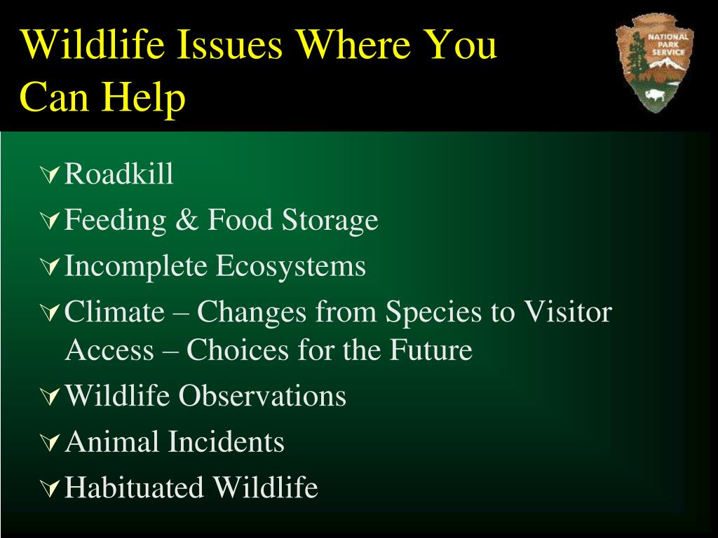 Wildlife Issues Where You Can Help