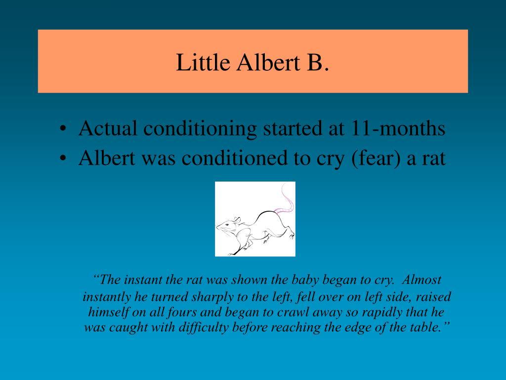 Little Albert B.
