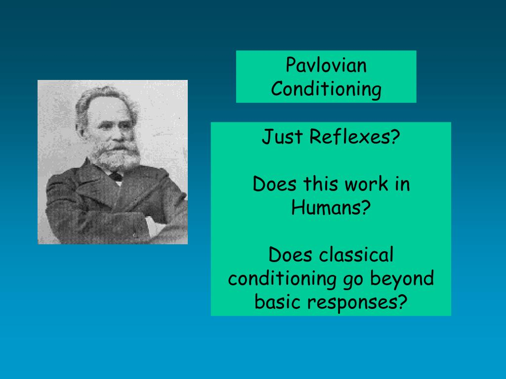 Pavlovian Conditioning
