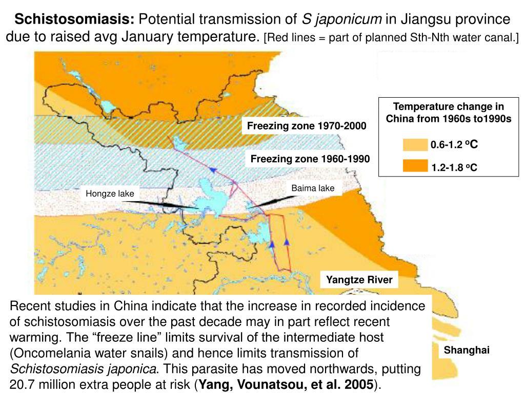 Schistosomiasis: