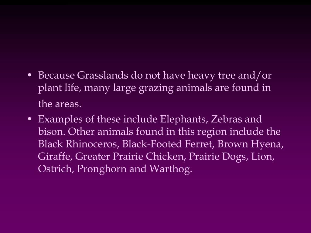 Because Grasslands do not have heavy tree and/or plant life, many large grazing animals are found in the areas.