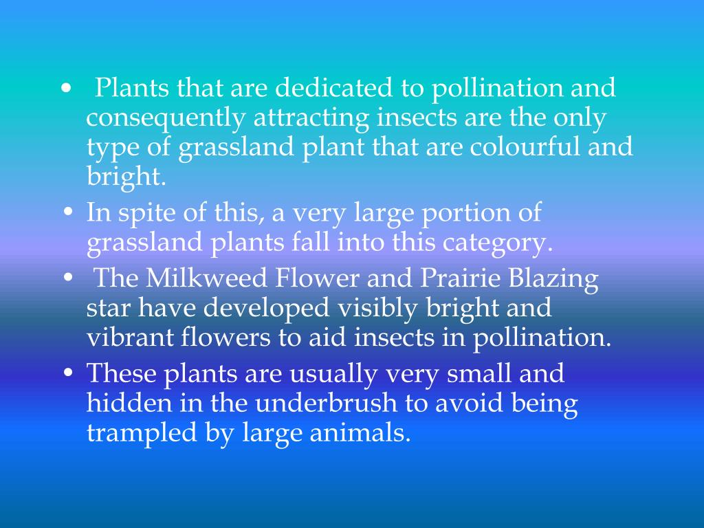 Plants that are dedicated to pollination and consequently attracting insects are the only type of grassland plant that are colourful and bright.