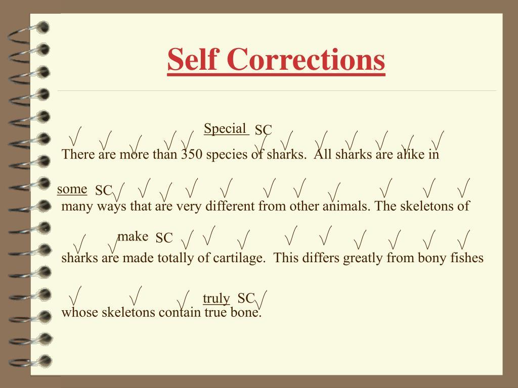 Self Corrections