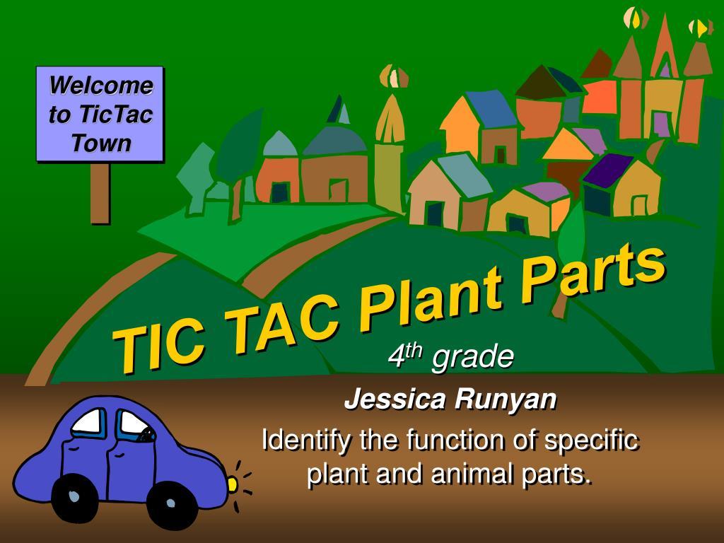 tic tac plant parts