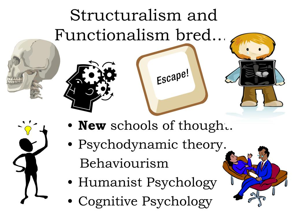 humanistic psychodynamic and structuralism Explore some common features and differences between humanistic therapy and psychodynamic therapy.