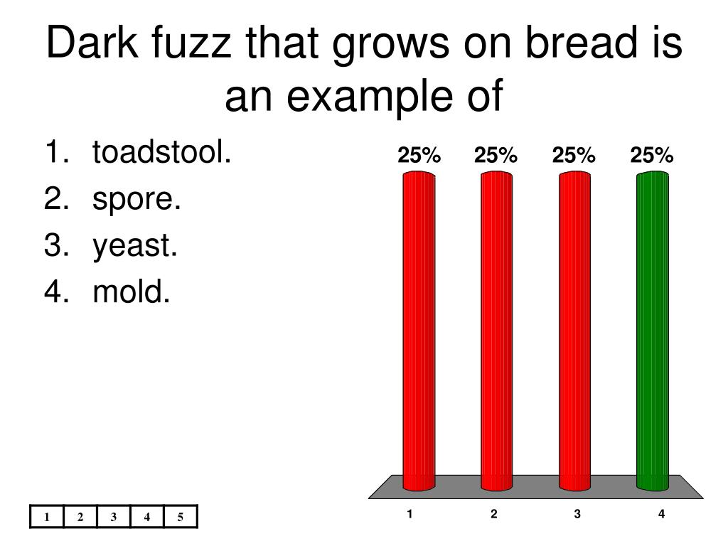Dark fuzz that grows on bread is an example of