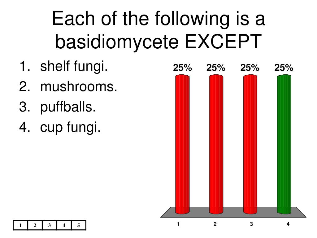 Each of the following is a basidiomycete EXCEPT