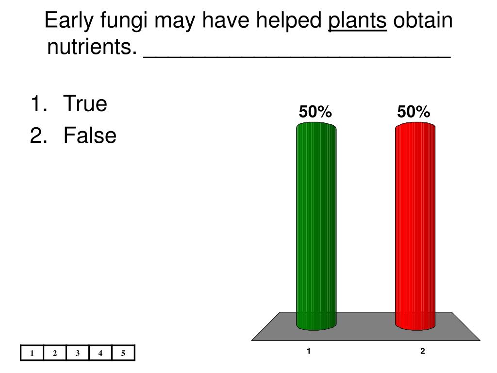 Early fungi may have helped