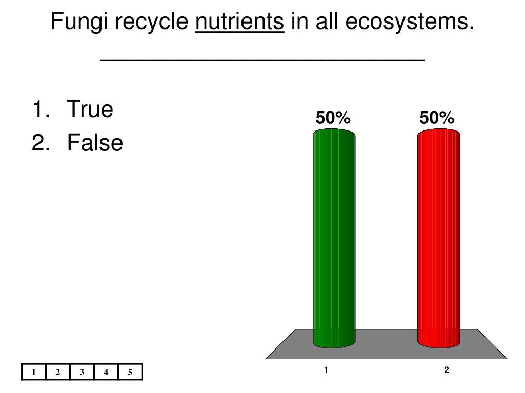 Fungi recycle