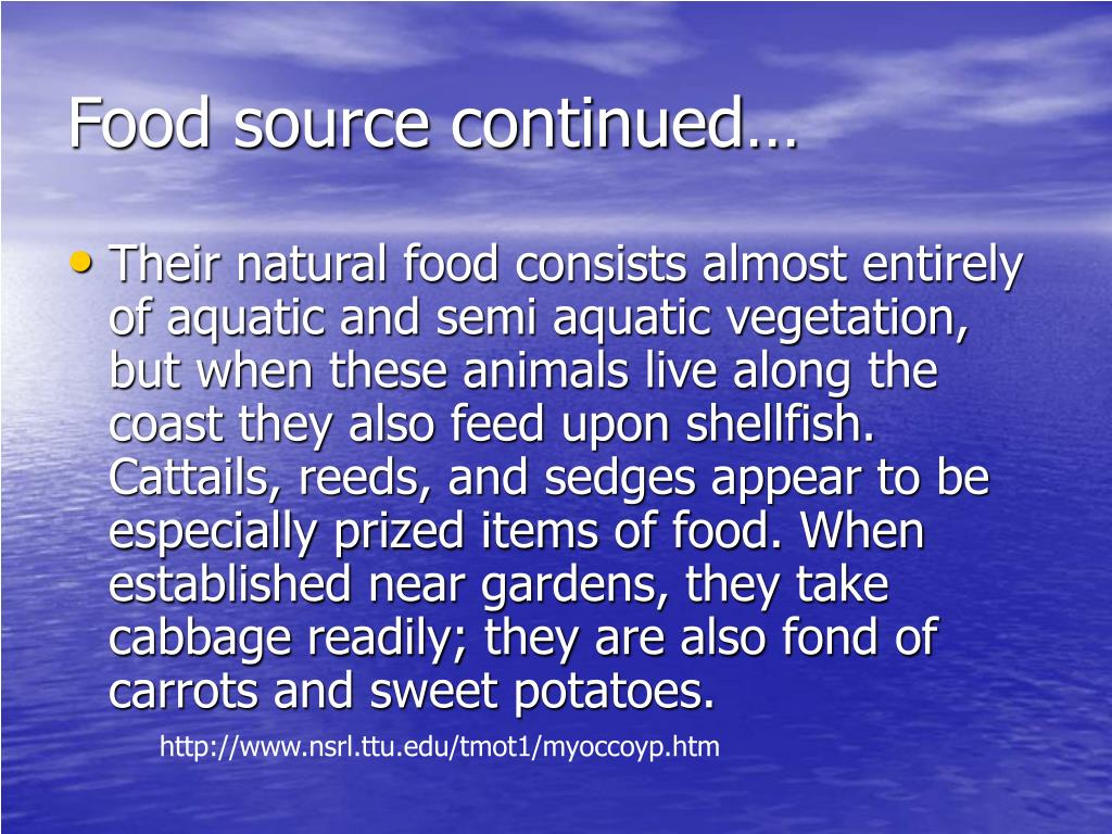 Food source continued…