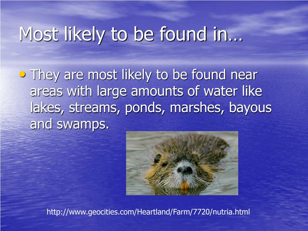 Most likely to be found in…
