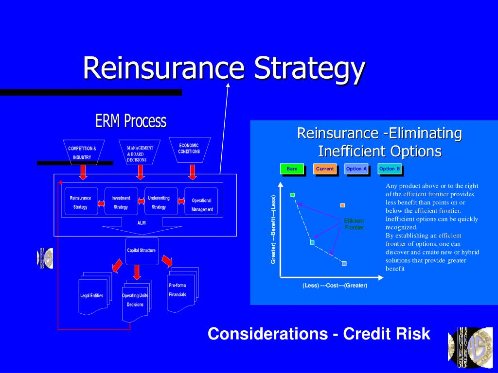 Reinsurance Strategy