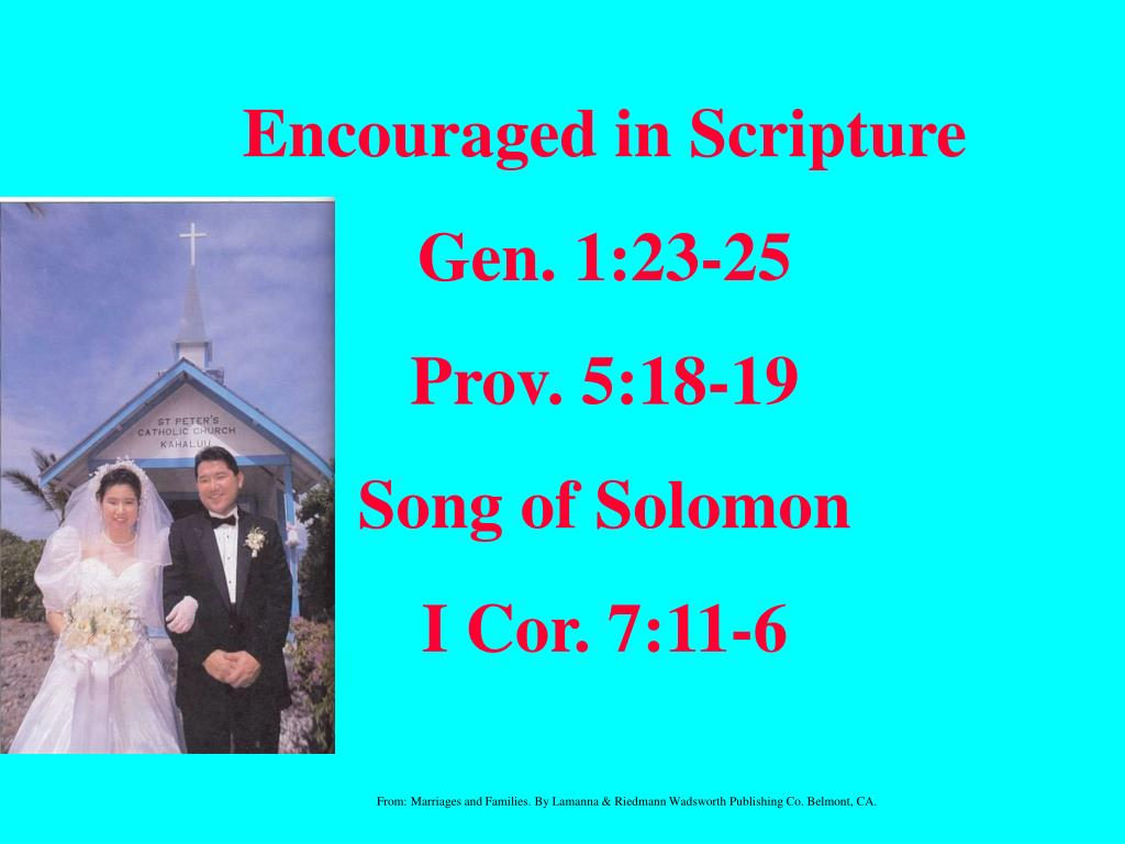 Encouraged in Scripture