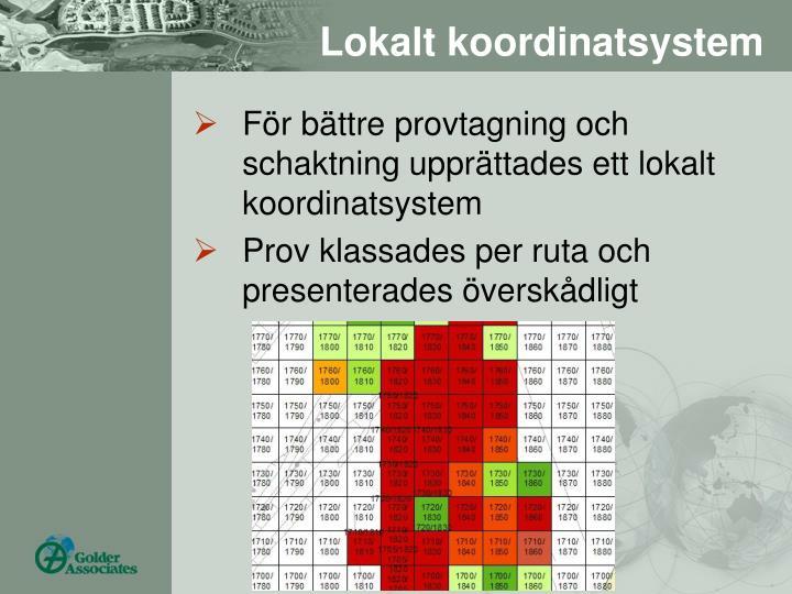 Lokalt koordinatsystem