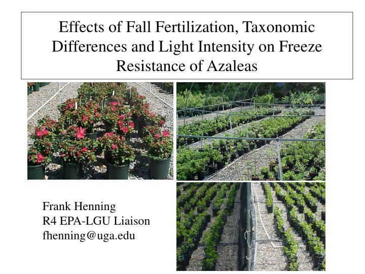 Effects of Fall Fertilization, Taxonomic Differences and Light Intensity on Freeze Resistance of Aza...
