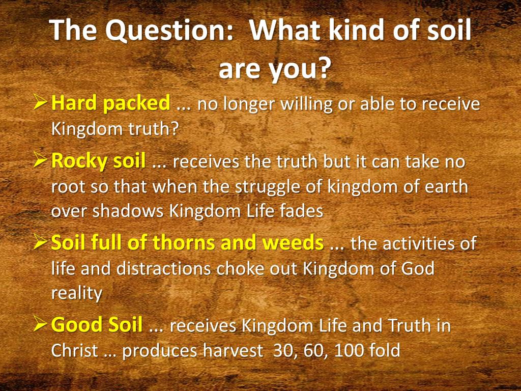 The Question:  What kind of soil are you?