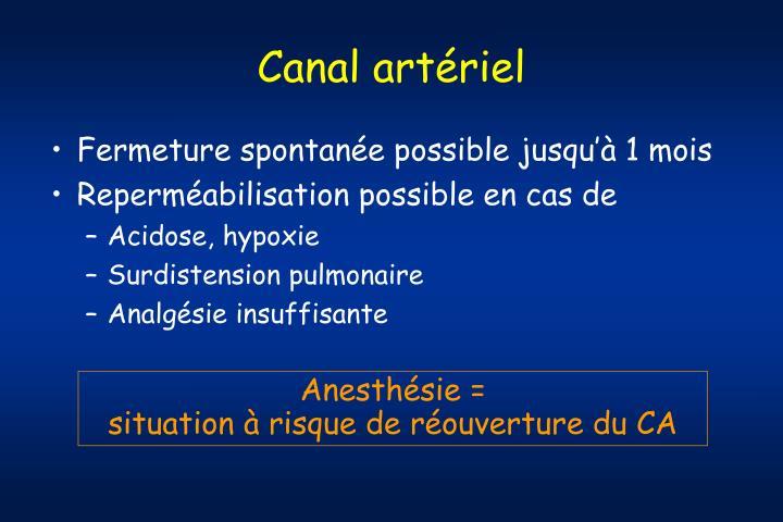 Canal artériel