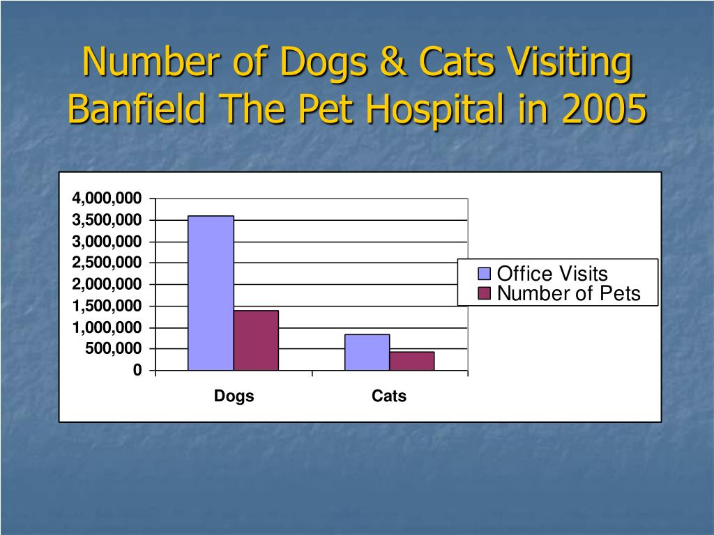 Number of Dogs & Cats Visiting
