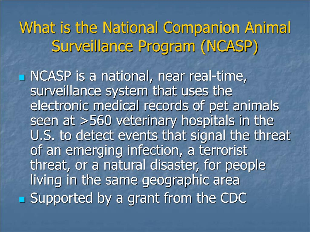 What is the National Companion Animal Surveillance Program (NCASP)