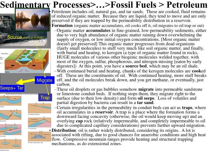 Sedimentary Processes>…>Fossil Fuels > Petroleum