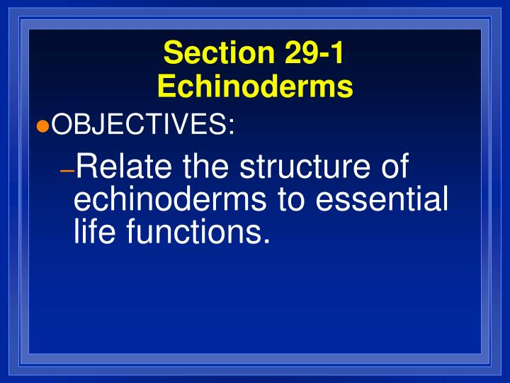 Section 29 1 echinoderms