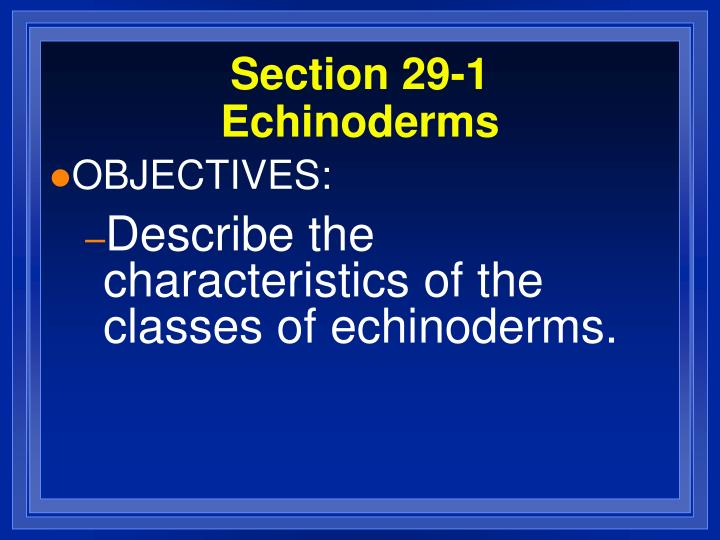 Section 29 1 echinoderms3