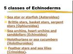 5 classes of echinoderms