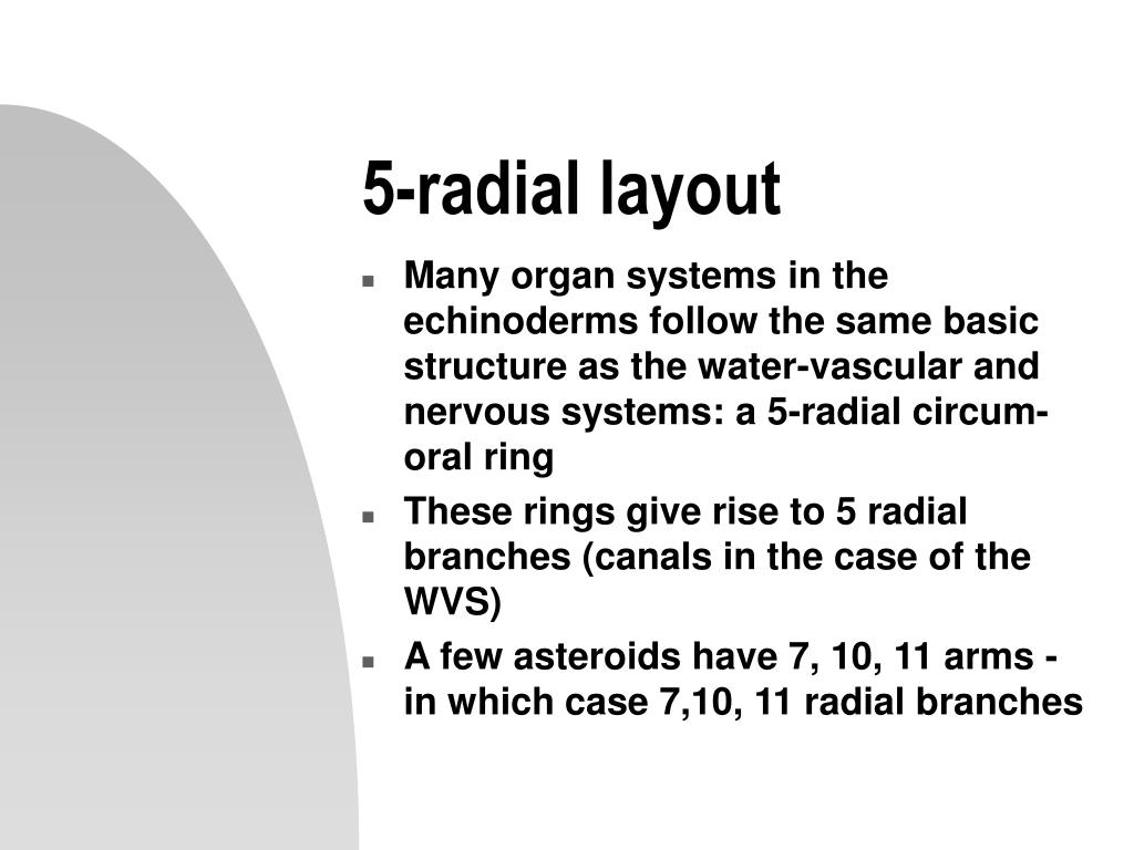 5-radial layout