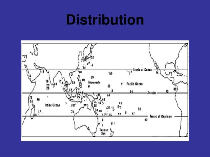 Distribution l.jpg