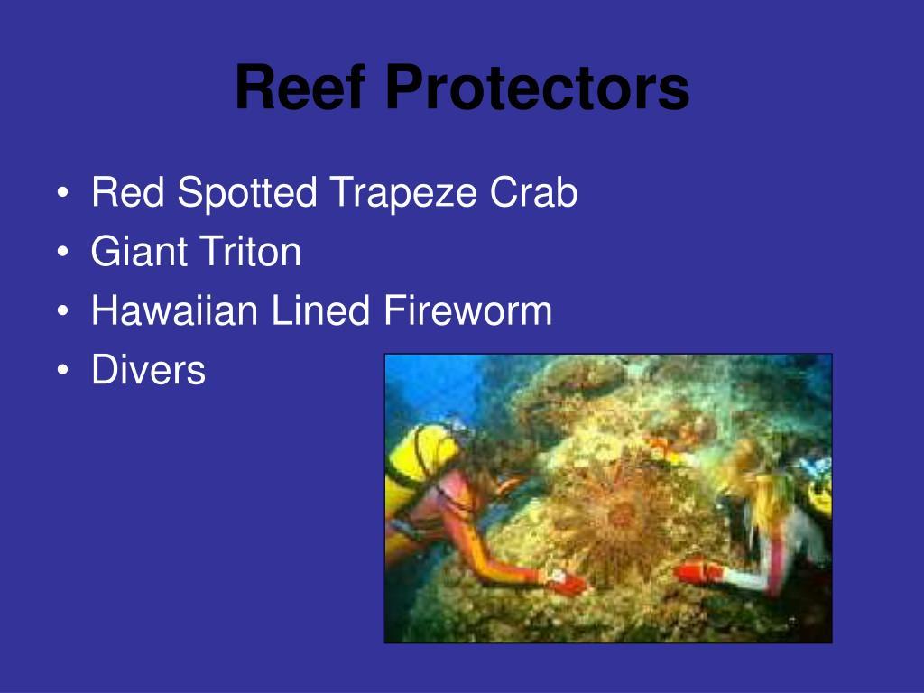 Reef Protectors