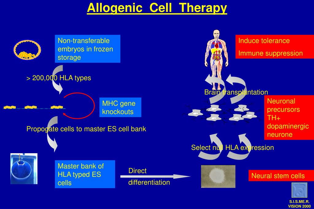 Allogenic  Cell  Therapy