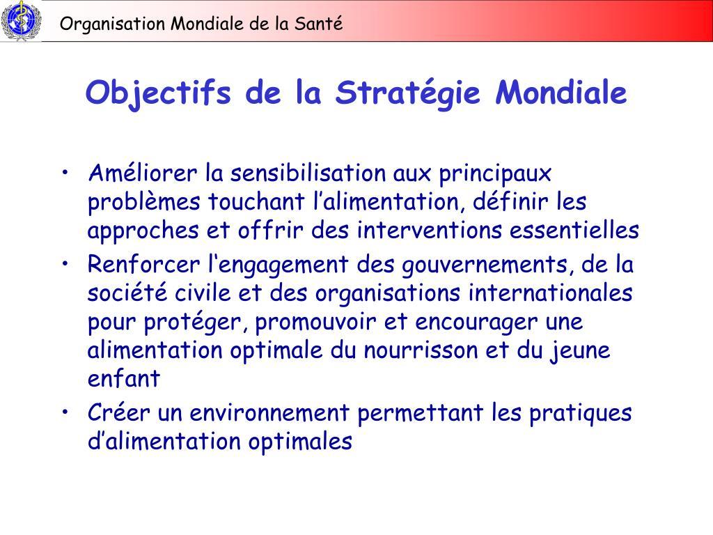 Objectifs de la Stratégie Mondiale