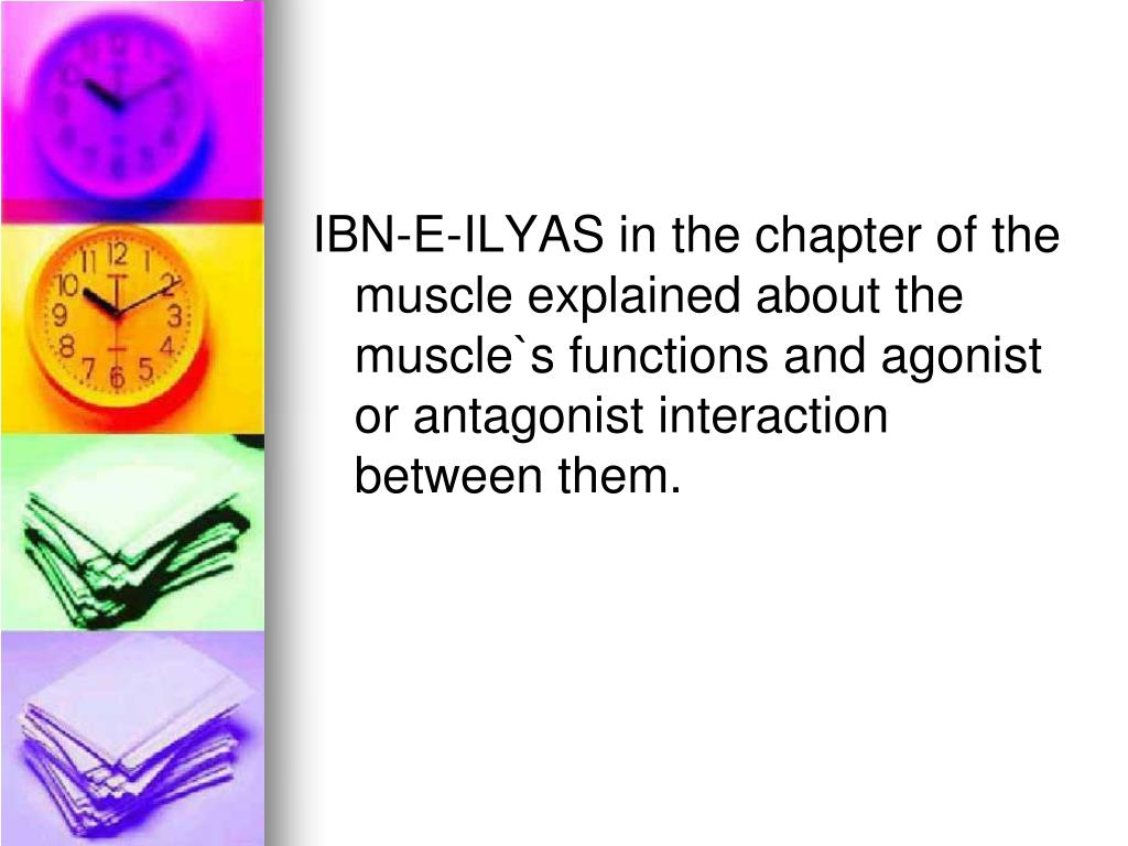 IBN-E-ILYAS in the chapter of the muscle explained about the muscle`s functions and agonist or antagonist interaction between them.