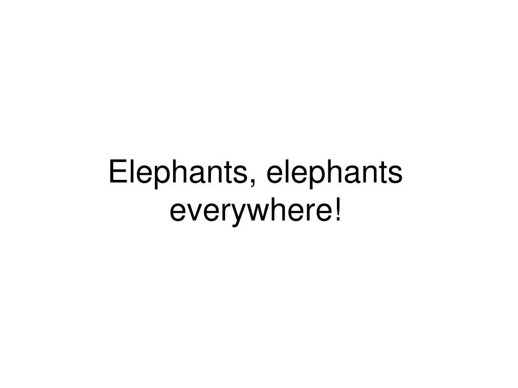 Elephants, elephants everywhere!