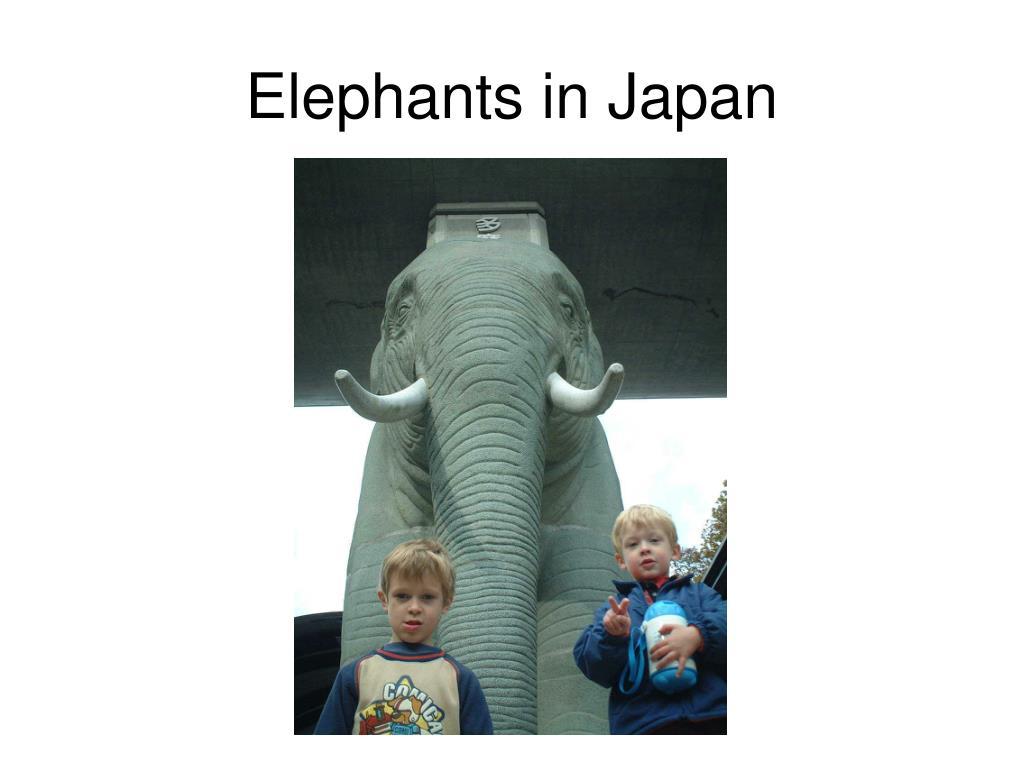Elephants in Japan