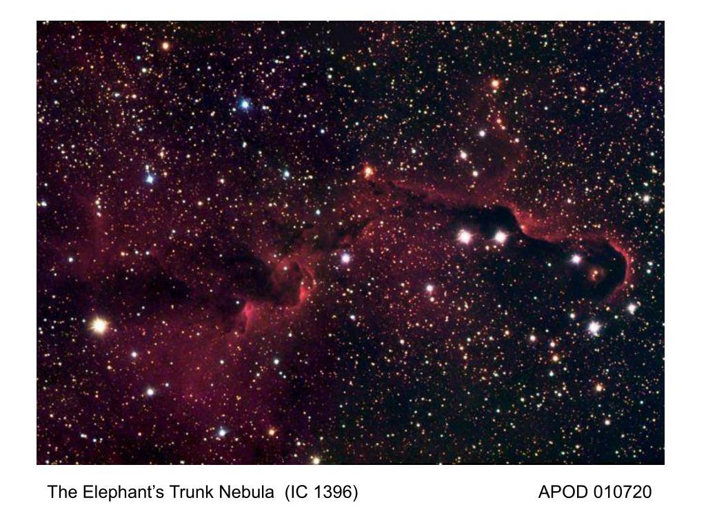 The Elephant's Trunk Nebula  (IC 1396)                                     APOD 010720