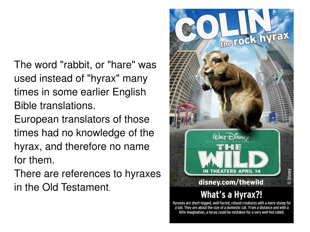 """The word """"rabbit, or """"hare"""" was"""