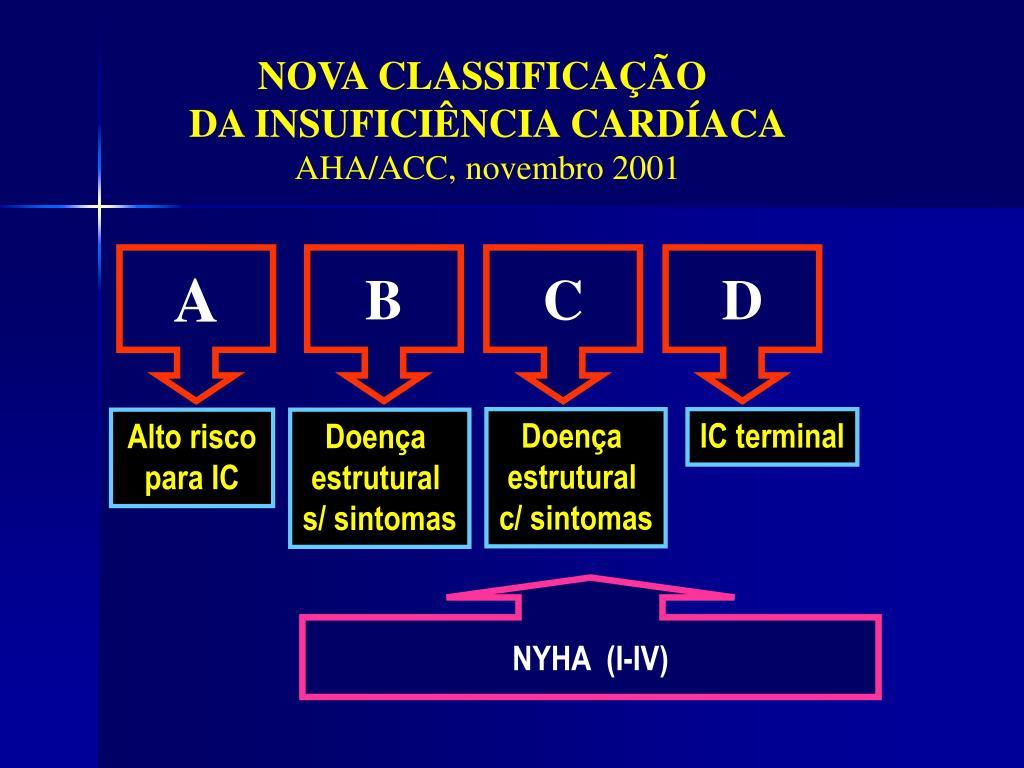 NOVA CLASSIFICAÇÃO