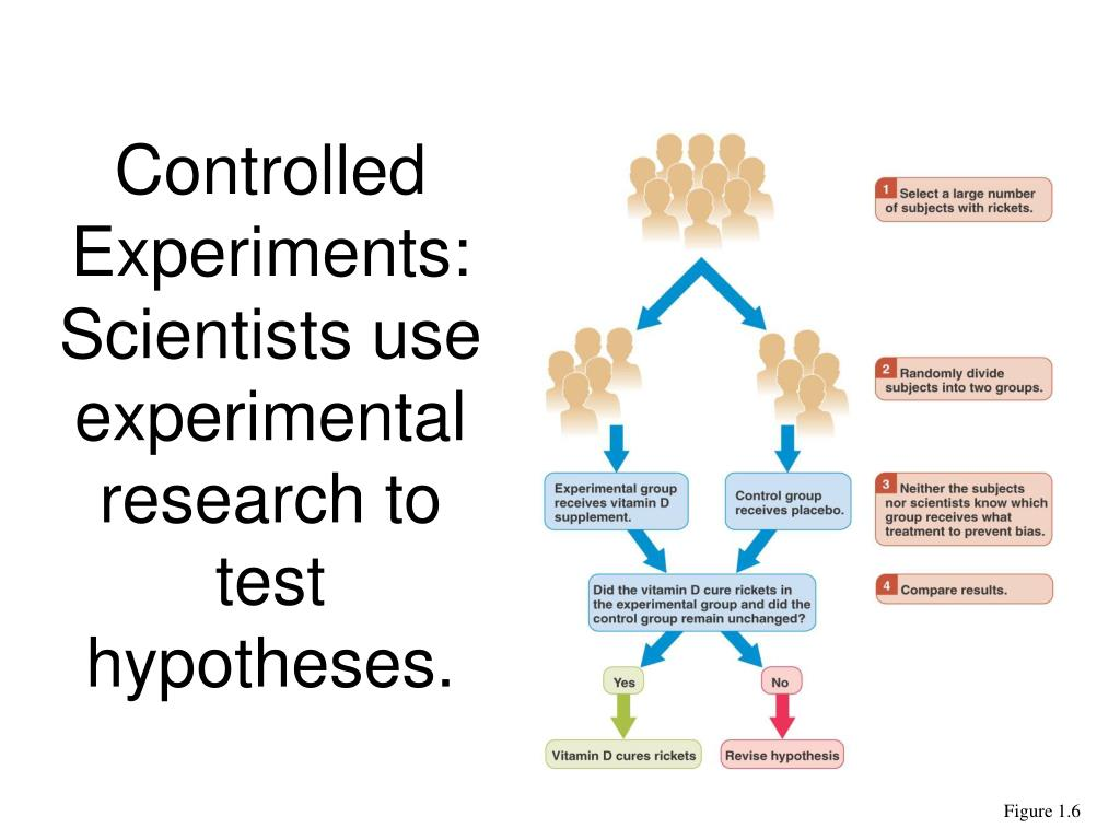 Controlled Experiments: Scientists use experimental research to test hypotheses.