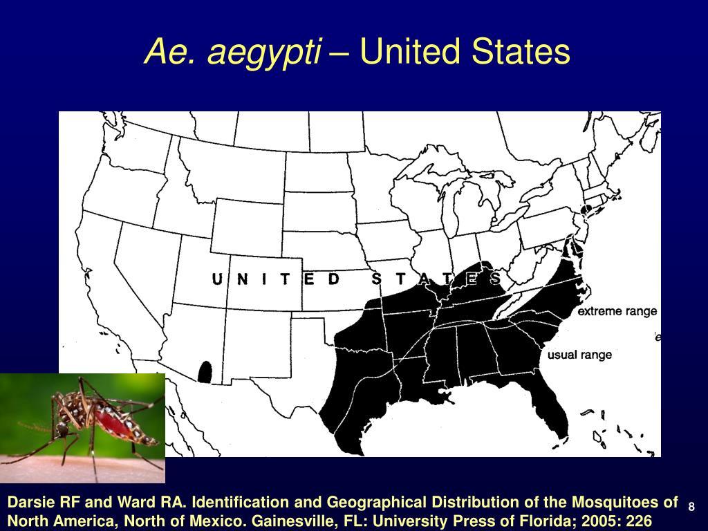 Ae. aegypti