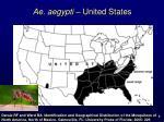 ae aegypti united states