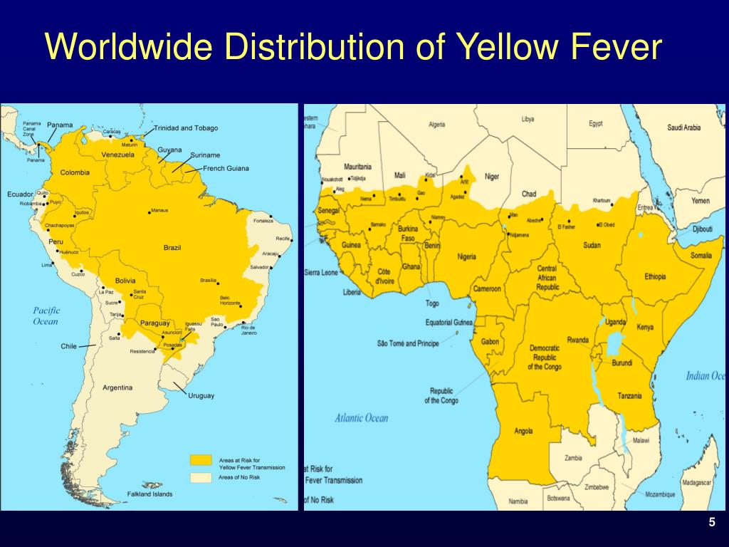 Worldwide Distribution of Yellow Fever